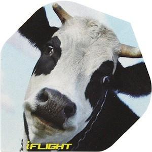 "iFlight ""Kuh"" - Standard"